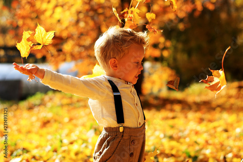 Leinwanddruck Bild Little cute boy walking in autumn Park