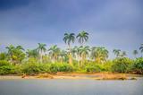 countryside, Cuban nature