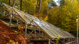 solar panels surrounded by an autumn forest - 231514783