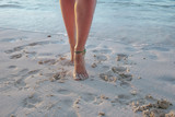 Walking on the beach - 231519713