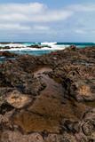 Meer und Küste in Teneriffa - 231552725