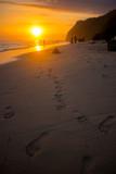 amazing sunset beach view theme