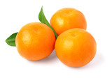 Ripe mandarin with leaves close-up on a white background. - 231555727