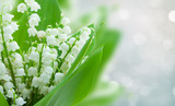 lilly of the valley flowers on gray bokeh banner with copy space