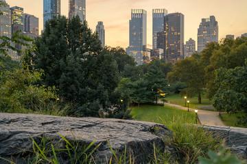 Cat Rock Central Park Manhattan © Scott