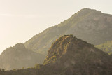 Mountains covered with forest. Close-up - 231570528