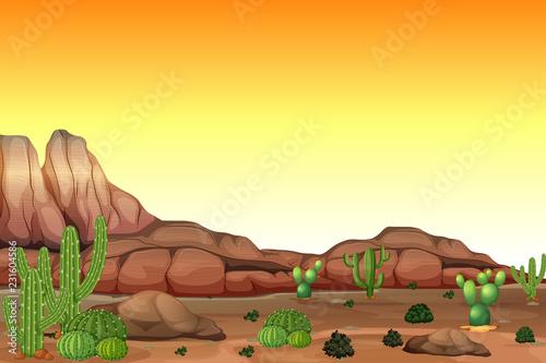 Desert scene at sunset - 231604586