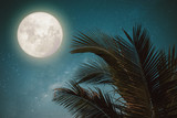 Beautiful fantasy palm tree tropical leaf with wonderful full moon - Milky Way star in night skies,  vintage color tone style.