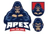 gorilla crossed hands - 231625970