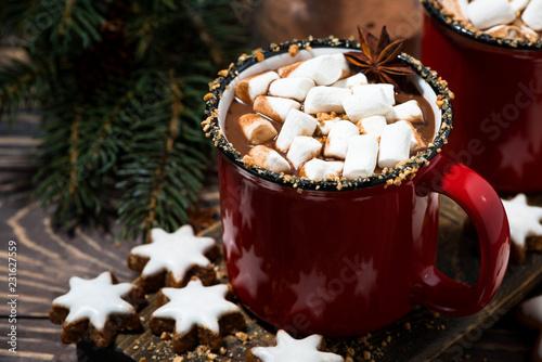 cozy winter drink hot chocolate, closeup