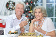 Portrait of couple celebrating Christmas with champagne