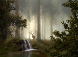 Waldgeheimnisse © Hanna Gottschalk