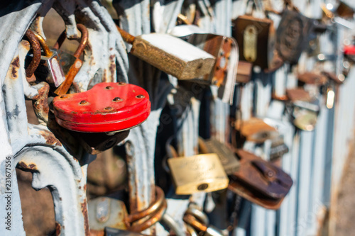 Locks on the fence of the bridge