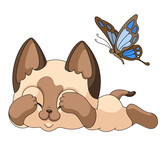 5 Siamese little cat lies closed eyes scared  blue butterfly. vector illustration