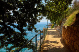 Lovran, Istria, Croatia. Picturesque embankment along resort old - 231684151