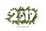 Holiday New year card  2019 - fir branches - 231697794