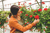 Florist taking care of flowers - 231698399