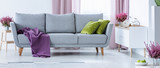 Grey couch with purple blanket and green pillows in real photo of white sitting room interior with fresh heathers and cupboard with bike shape clock - 231706995
