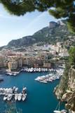 Veduta di Montecarlo con il suo porto - 231712122