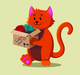 A red cat moving to a new house