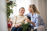 A senior woman in wheelchair with a health visitor at home at Christmas time. - 231747541