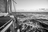 Black and white picture of an old sailing ship cruise. - 231750574