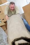 man struggling moving rolled carpet - 231783789