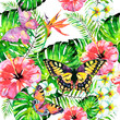 Hawaiian flowers, butterflies, watercolor, exotic plants, isolated on a white - 231796721