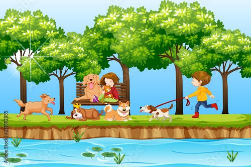 fototapeta na ścianę Children and dogs in park