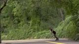 Slow Motion Skateboarding Through Forest - 231821982