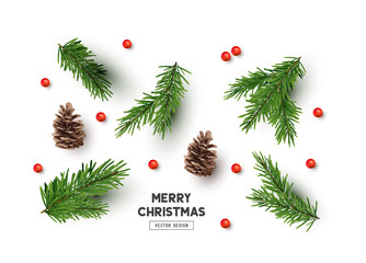 Vector Christmas Natural Decoration Set
