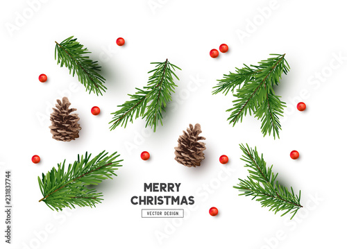 Vector Christmas Natural Decoration Set - 231837744
