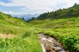 Frischer Gebirgsbach in den Bergen der Alpen - 231844998