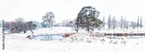 Foto Murales Rural farmlands in country Australia after fresh snow falls