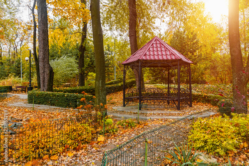 Gazebo in the autumn park with sunlight - 231855789