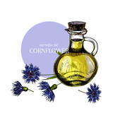 Hand drawn set of essential oils. Vector colored cornflower flower. Medicinal herb with glass dropper bottle. Engraved art. For cosmetics, medicine, treating, aromatherapy, package design health care.