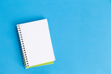 blank grid notebook with color background - 231881184
