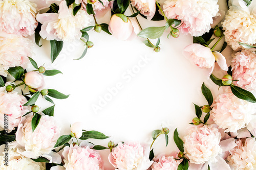 Frame made of beautiful pink peonies on white background. Flat lay, top view. Valentine's background. Floral frame. Peony texture. - 231881997