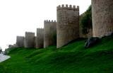 Muralla de Avila, Castilla León, España - 231887518