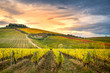 Chianti region, Tuscany. Vineyards at sunset in autumn. Central Italy