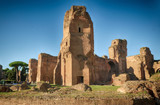 Ruins of ancient Baths of Caracalla in Rome - 231909175