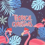 Tropical Christmas poster with flamingo. Merry Christmas greeting or invitation card. Editable vector illustration - 231919168