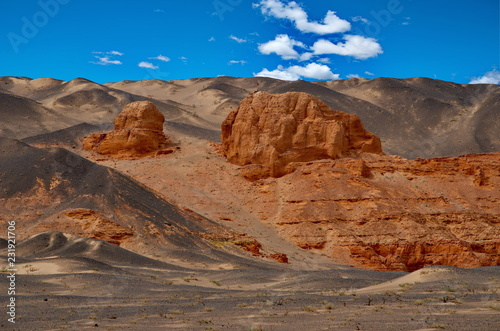 Mongolia. Herman Tsav oasis in the middle of the lifeless Gobi desert - 231921706
