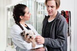 Happy female veterinarian carrying sick puppy in hospital - 231929132