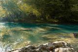 fiume nel bosco in autunno - 231930770