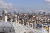 Panoramic view of the rooftops of the city - 231980769