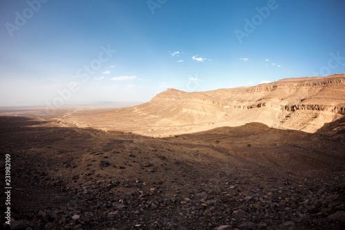 sahara desert - 231982109