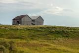 old barn in field - 231993769