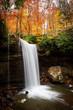 Autumn Falls - 232001711