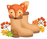 a vector of a cute fox inside a boots - 232028989